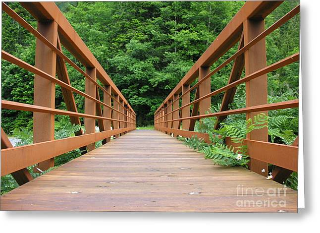Long Leaves Greeting Cards - Bridge It  Greeting Card by Diane  Greco-Lesser