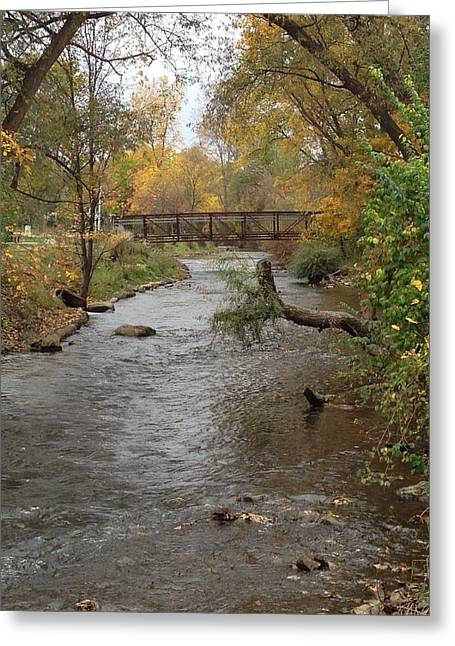Fishing Creek Greeting Cards - Bridge Greeting Card by Jim Richardson