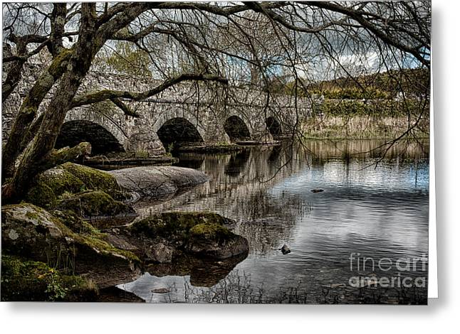 Moss-covered Greeting Cards - Bridge Over Llyn Padarn Greeting Card by Amanda And Christopher Elwell