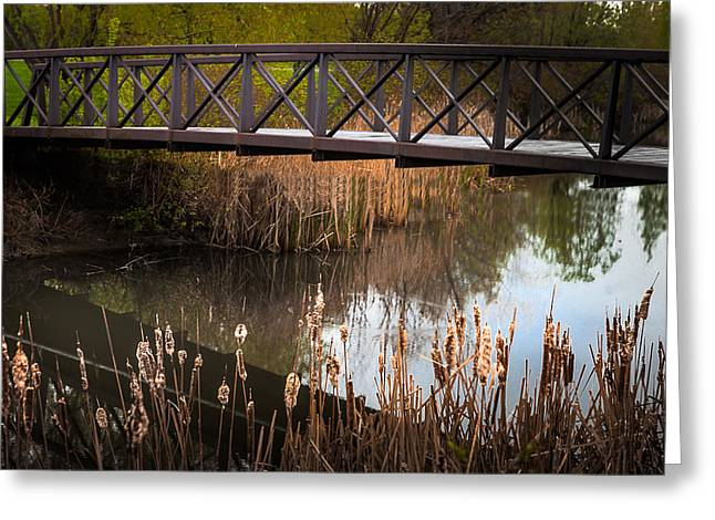 Pond In Park Greeting Cards - Bridge over Quiet Water Greeting Card by Donald  Erickson