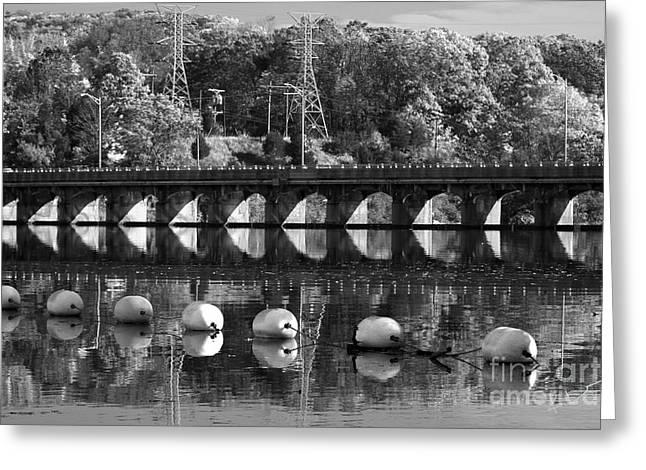 Bridge Reflection Greeting Card by Karol Livote