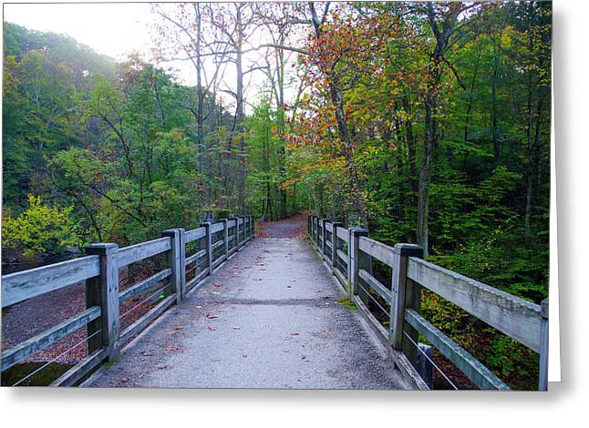 Bridge To Paradise - Wissahickon Valley Greeting Card by Bill Cannon