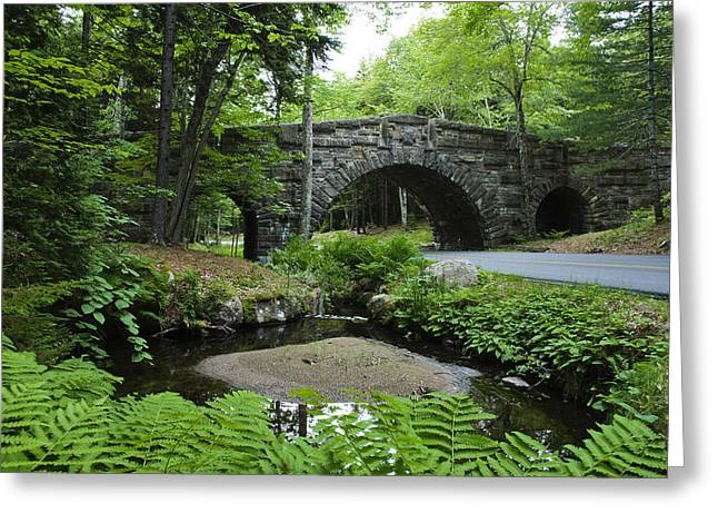 Famous Bridge Greeting Cards - Bridges of Acadia Greeting Card by Brian Kamprath