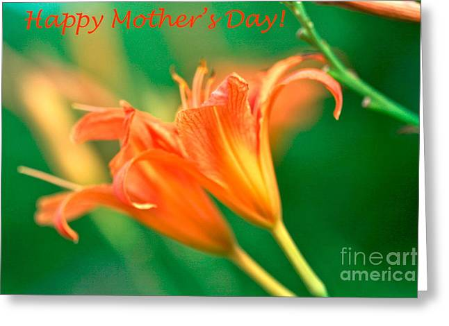Femina Photo Art Greeting Cards - Bright-mothers-day-card-tiger-lilies.png Greeting Card by Maggie Vlazny