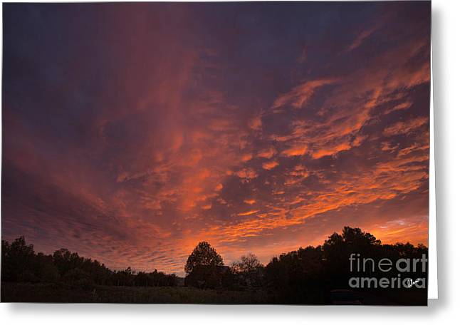 Sunset Prints Greeting Cards - Brilliant Sky Greeting Card by Alana Ranney