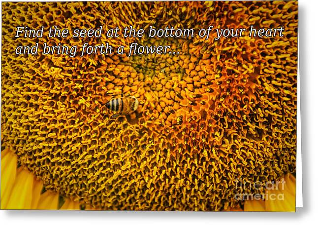 Healthy Greeting Cards - Bring Forth A Flower Greeting Card by Janice Rae Pariza