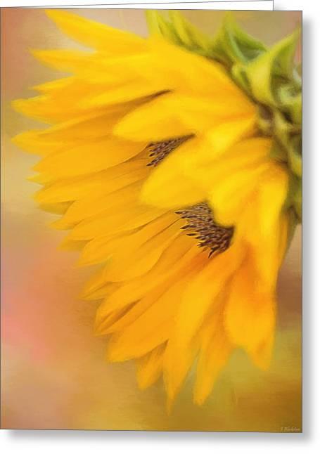 Bring Sunshine - Sunflower Art Greeting Card by Jordan Blackstone