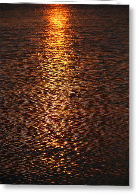 Ripples In The Water Greeting Cards - Bring your own sunshine Greeting Card by Susanne Van Hulst