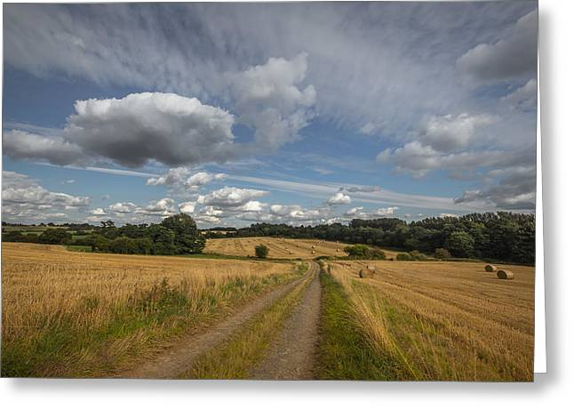 Bale Greeting Cards - British agriculture Greeting Card by Chris Fletcher