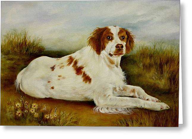 Brittany Spaniel   Greeting Card by Holly Way