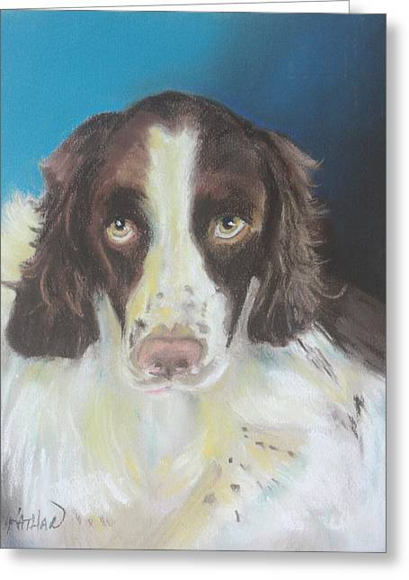 Spaniel Greeting Cards - Brittany Spaniel I Greeting Card by Kathleen Hartman