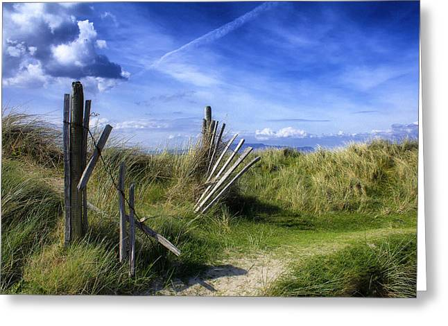 Sanddunes Greeting Cards - The broken fence  Greeting Card by Frank Fullard