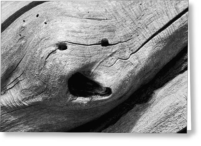 Wood Sculpture Greeting Cards - Broken Smiles Greeting Card by Donna Blackhall