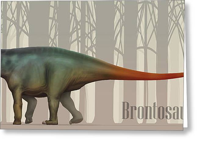 Brontosaurus Greeting Cards - Brontosaurus Excelsus Size Compatison Greeting Card by Christian Masnaghetti