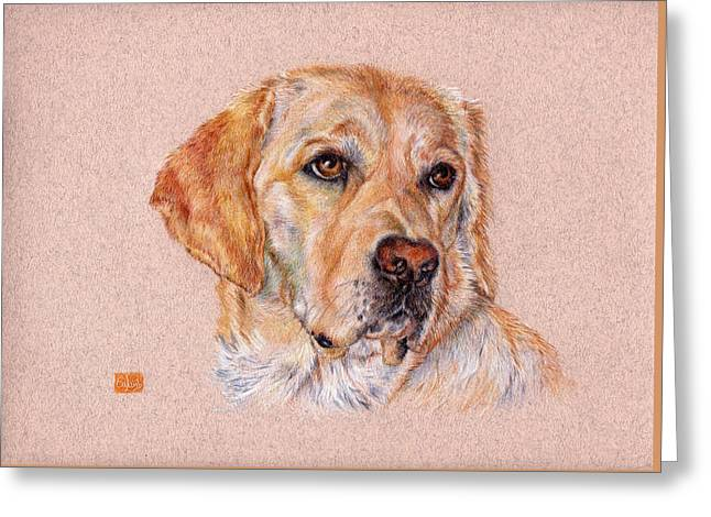 Coloured Greeting Cards - Brooke Greeting Card by Liz  Lamb