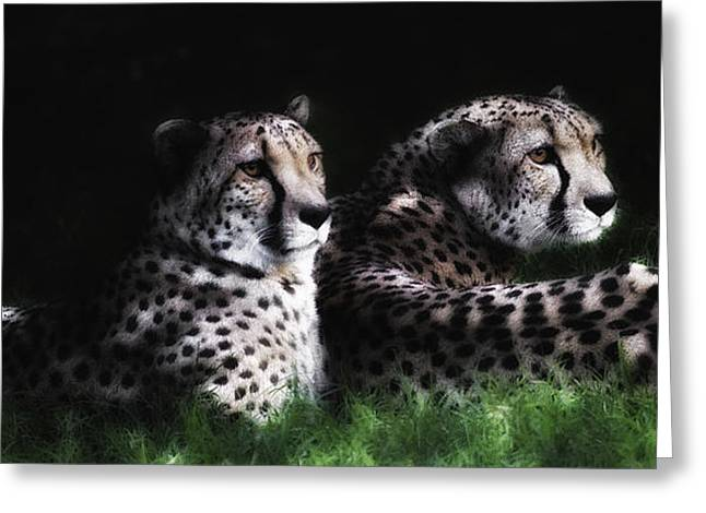 Barry Styles Greeting Cards - Brothers Greeting Card by Barry Styles