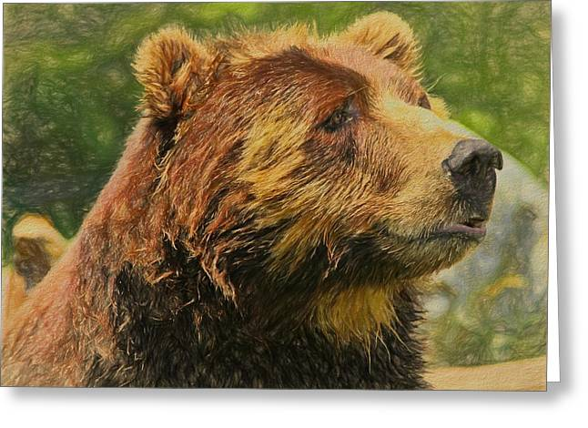 Brown Bear Portrait Greeting Card by Dan Sproul