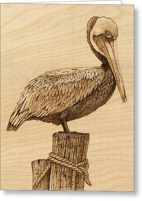 Sea Birds Pyrography Greeting Cards - Brown Pelican Greeting Card by Danette Smith