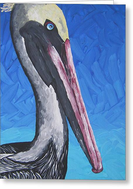 Brown Pelican Greeting Card by Nick Flavin