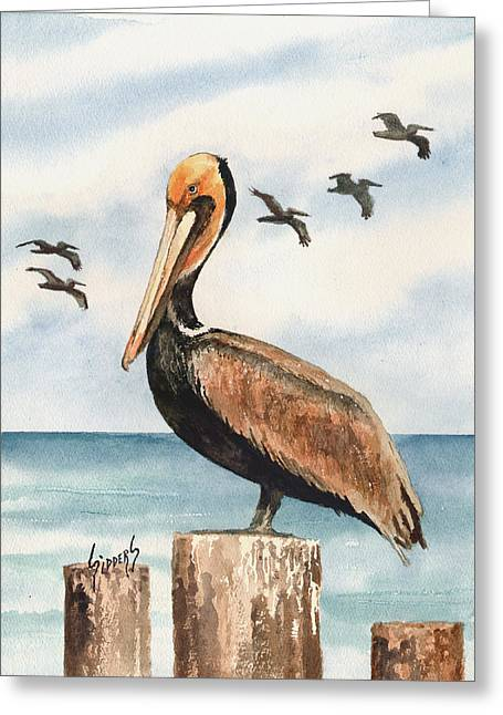 Pelican Greeting Cards - Brown Pelicans Greeting Card by Sam Sidders