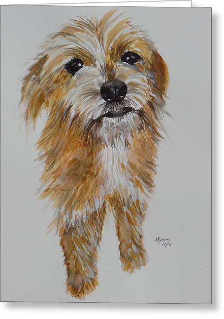 Toy Dog Greeting Cards - Brussels Griffon Poodle MIX Greeting Card by David K Myers