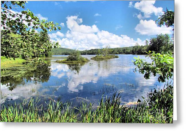 Outlook Greeting Cards - Bryant Pond Maine Greeting Card by Elizabeth Dow