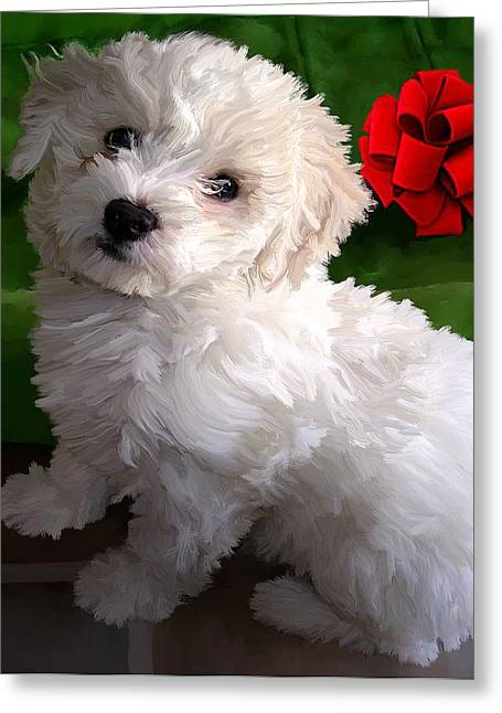 Puppies Digital Greeting Cards - Bryce Greeting Card by David Wagner