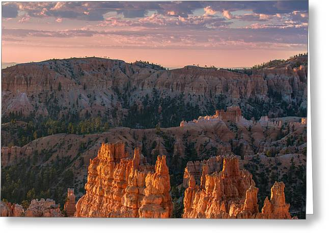 Colorado Plateau Greeting Cards - Bryce Morning Greeting Card by Joseph Smith