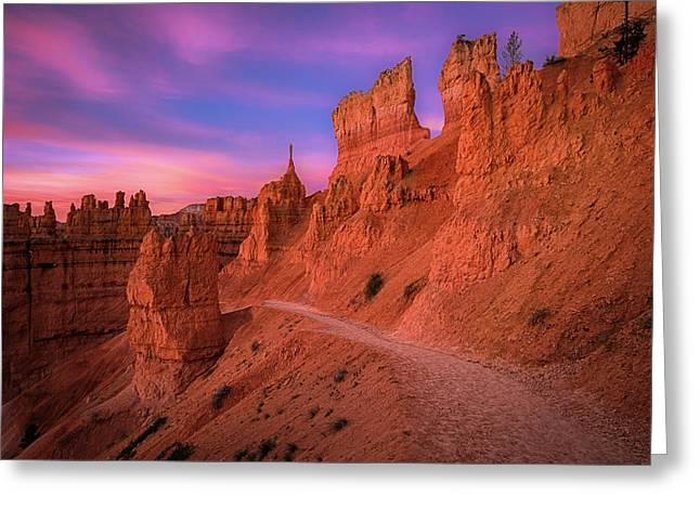 Bryce Trails Greeting Card by Edgars Erglis