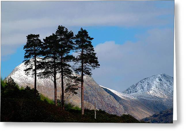 Etive Mor Greeting Cards - Buachaille Etive Mor from Glen Etive Greeting Card by John McKinlay