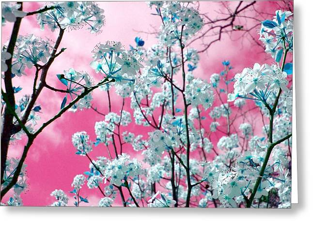 Flower Blossom Greeting Cards - Bubblegum Skies Greeting Card by Kathy Bucari