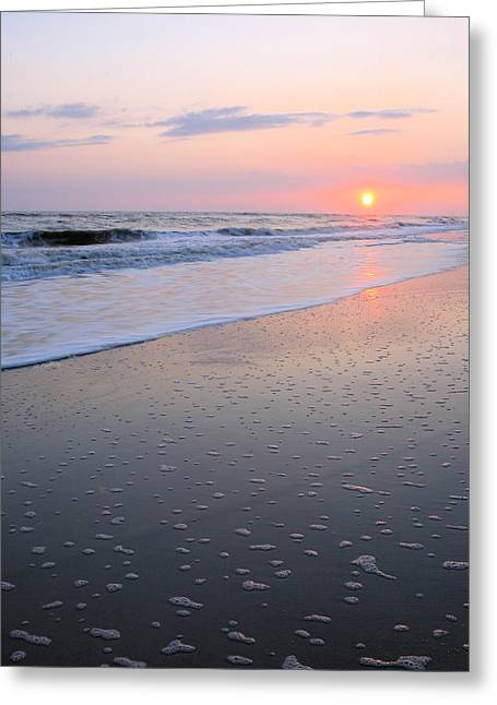 Sea Oats Greeting Cards - Bubbles Greeting Card by JC Findley