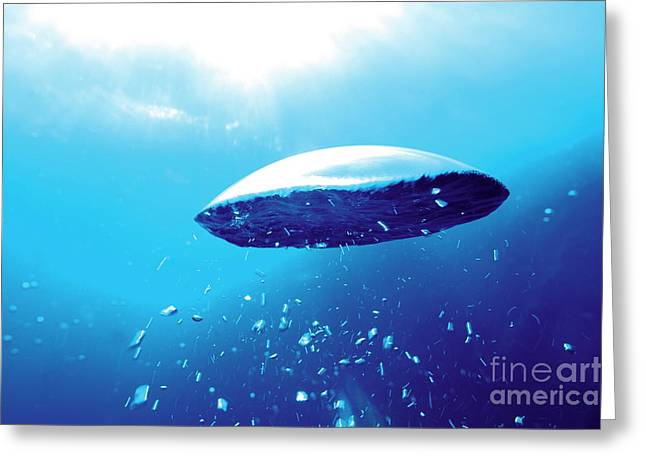 Sami Sarkis Greeting Cards - Bubbles underwater Greeting Card by Sami Sarkis