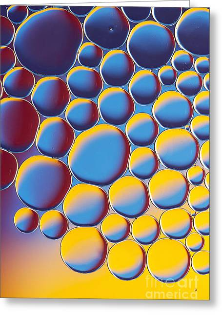 Bubbly Greeting Card by Tim Gainey