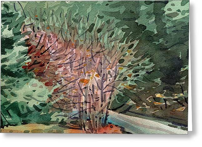 Buckeye Greeting Cards - Buckeye and Redwoods Greeting Card by Donald Maier