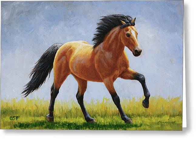 Running Horse Greeting Cards - Buckskin Horse - Morning Run Greeting Card by Crista Forest