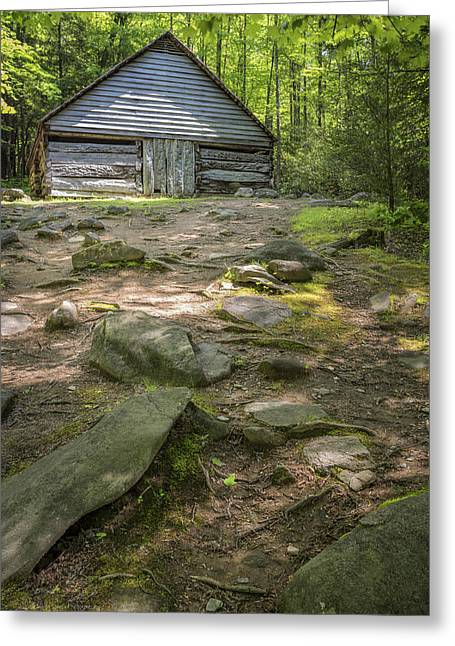 Roaring Fork Road Photographs Greeting Cards - Bud Ogle Cabin Site Greeting Card by Maria  Struss