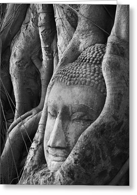Stones Photographs Greeting Cards - Buddha head Greeting Card by Jessica Rose