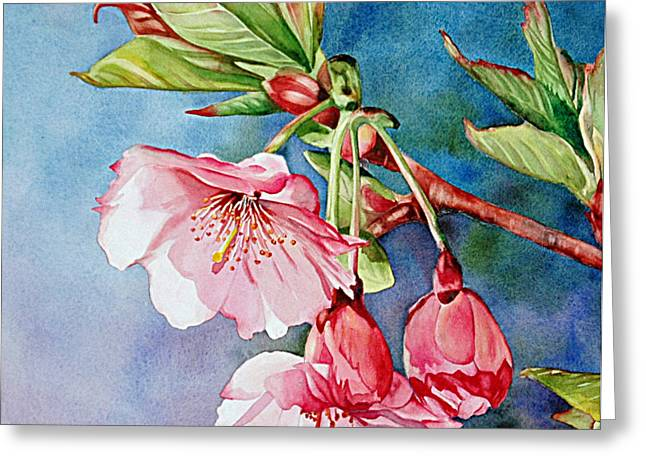 Budding Blossoms Greeting Card by Diane Fujimoto
