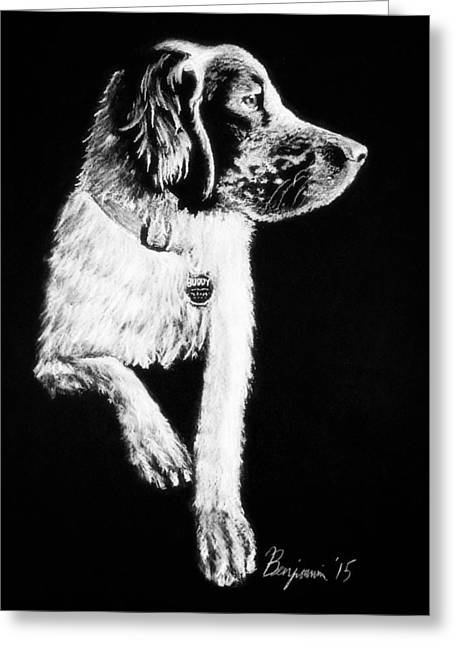 Setter Pointer Greeting Cards - Buddy Greeting Card by Benjamin Gassmann