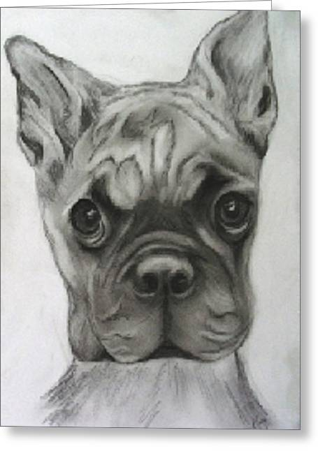 Puppies Drawings Greeting Cards - Buddy Bulldog Greeting Card by Jacquie King