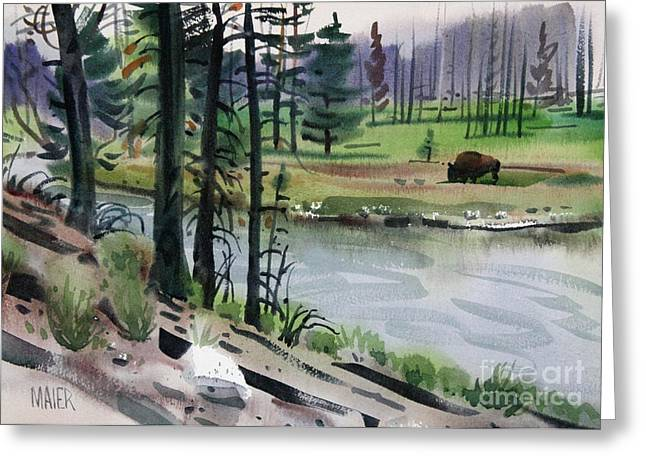 Yellowstone National Park Greeting Cards - Buffalo in Yellowstone Greeting Card by Donald Maier