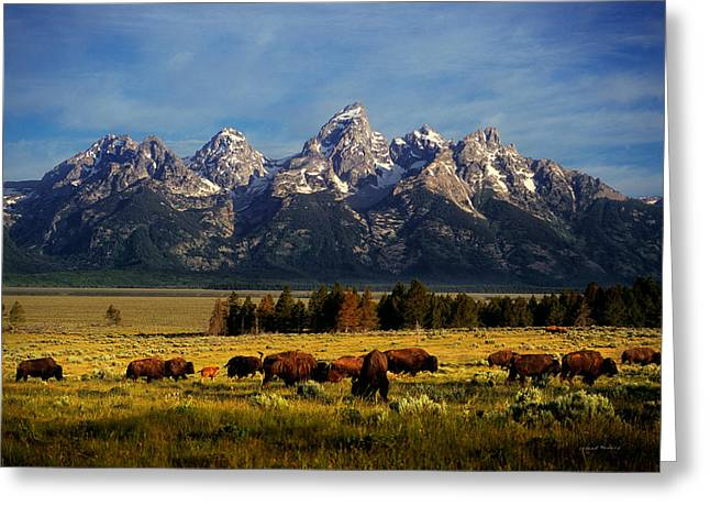 Most Greeting Cards - Buffalo under Tetons Greeting Card by Leland D Howard