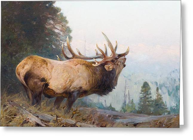 Native Stone Greeting Cards - Bugling Elk  Greeting Card by Carl Rungius