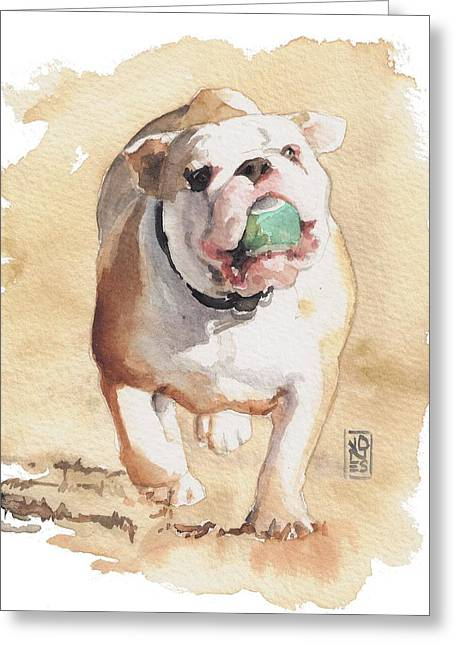 English Bulldog Portrait Greeting Cards - Bull and Ball Greeting Card by Debra Jones