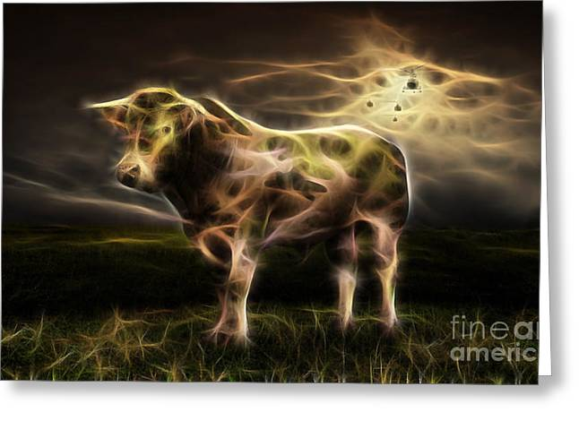 Bull Collection Greeting Card by Marvin Blaine