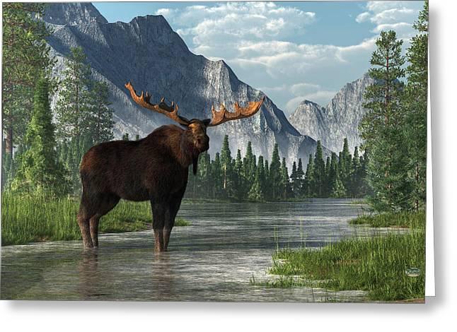 Canadian Wilderness Greeting Cards - Bull Moose Greeting Card by Daniel Eskridge