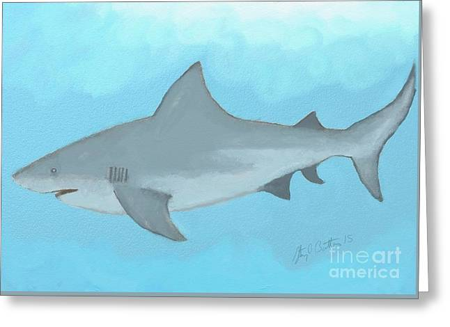 Hand Drawn Greeting Cards - Bull Shark Greeting Card by Stacy C Bottoms