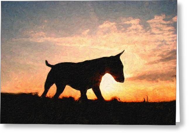 Bull Terrier at Sunset Greeting Card by Michael Tompsett