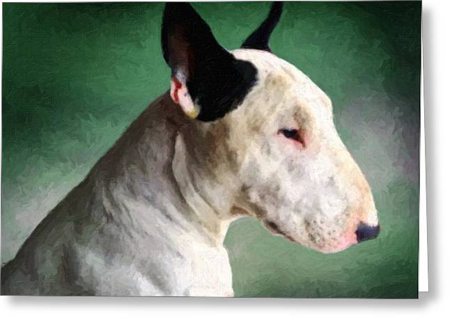 English Dog Greeting Cards - Bull Terrier on Green Greeting Card by Michael Tompsett